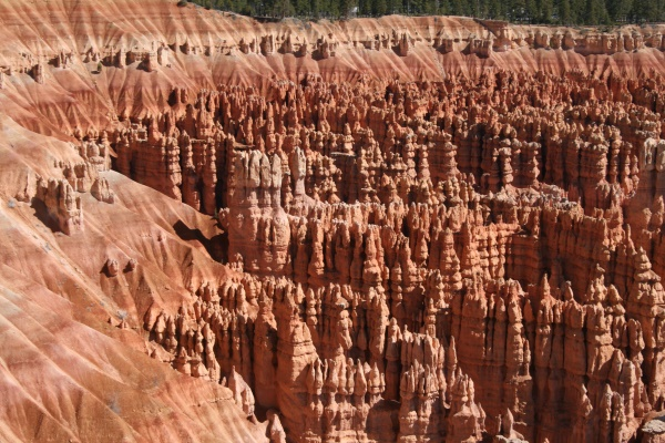 torentjes | Bryce National Park