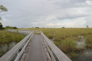 hikingtrails door de Everglades | Florida City