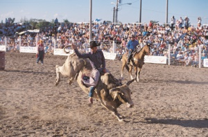 rodeowedstrijd in Florida City | Florida City