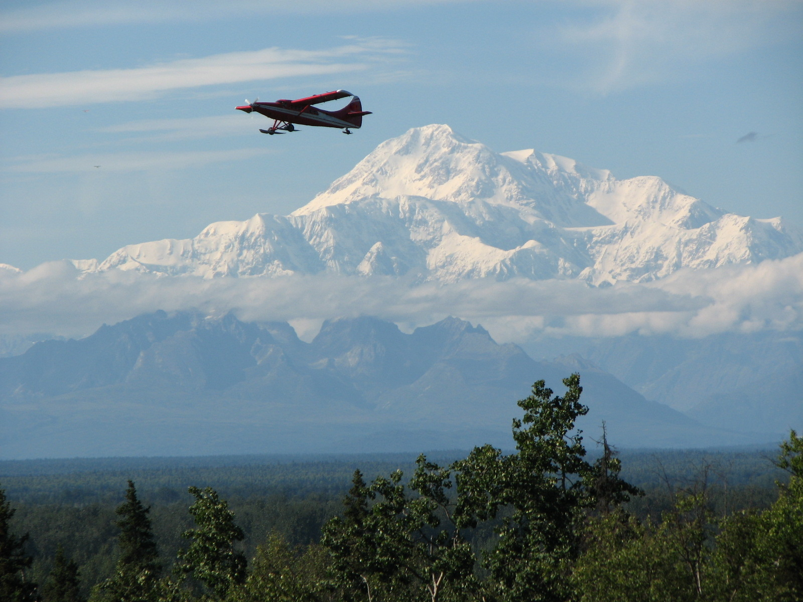 sightseeing tour | Mount McKinley