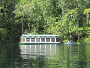 glass bottom boattour in Silver Springs State Park | Silver Springs